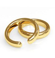 Nevada Divorce Forms - Broken wedding rings
